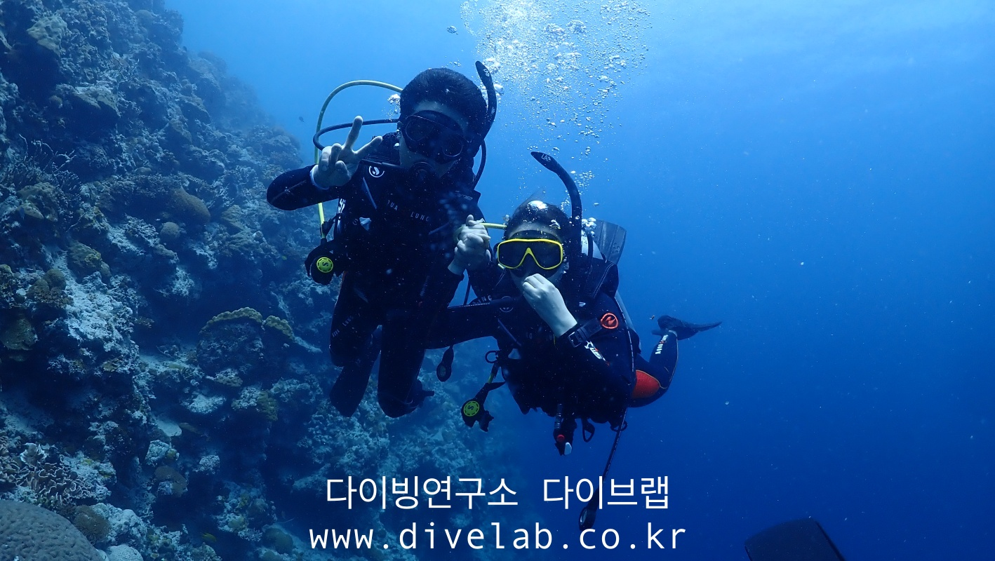 P7190875.jpg